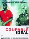 Un coupable ideal